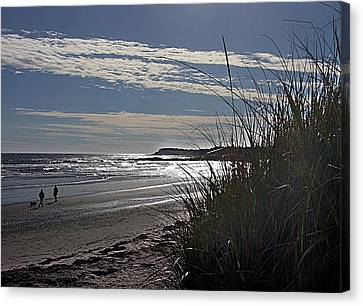 A Walk By The Sea Canvas Print by George Cousins