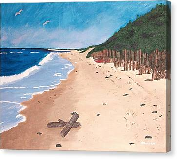 A Walk In Nantucket Canvas Print by Cynthia Morgan