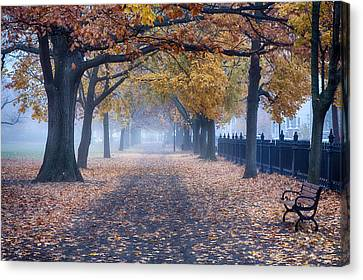 A Walk In Salem Fog Canvas Print by Jeff Folger
