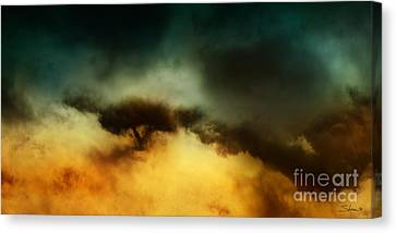 A Walk In The Clouds Canvas Print by Shevon Johnson
