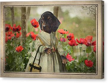 A Walk In The Garden Canvas Print by Terry Fleckney