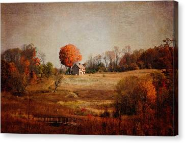 A Walk In The Meadow With Texture Canvas Print by Trina  Ansel