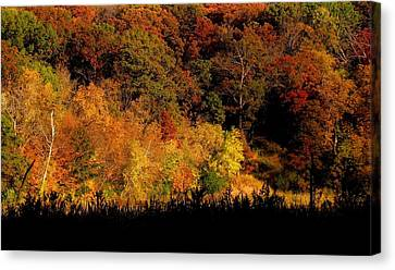 A Walk In The Park - Sunset In Autumn Canvas Print by Bridget Johnson