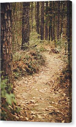 A Walk In The Woods Canvas Print by Heather Applegate