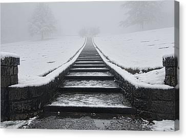 A Walk Into The Fog Canvas Print by Don Schwartz