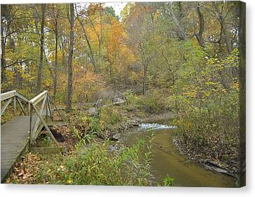 A Walk Next To The Creek Canvas Print