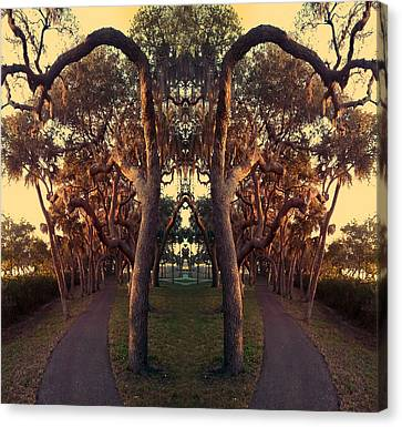 A Walk On The Not So Wild Side Canvas Print