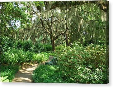 A Walk Through The Garden Canvas Print by Bob Sample