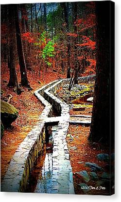 Canvas Print featuring the photograph A Walk Through The Woods by Tara Potts