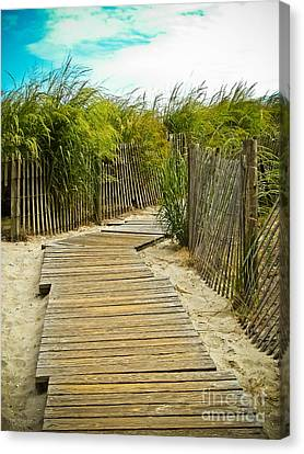 A Walk To The Beach Canvas Print