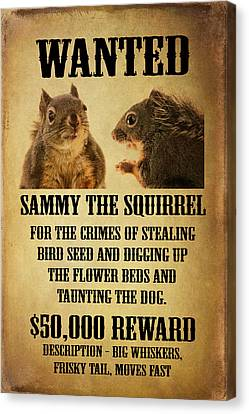 A Wanted Squirrel Canvas Print