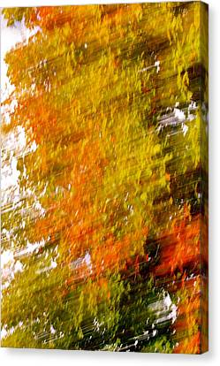 A Warm Day Canvas Print by Jocelyne Choquette