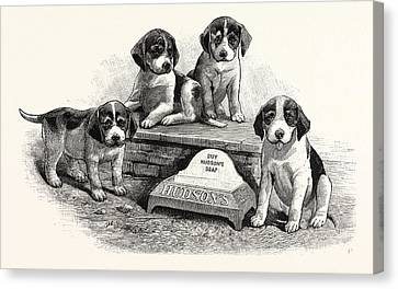 A Water Trough For Dogs To Drink Canvas Print by English School