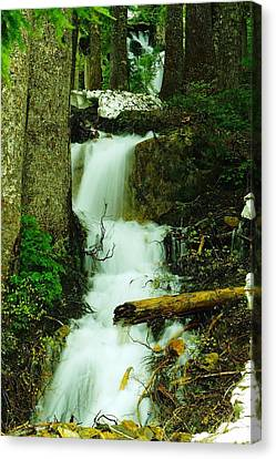 A Waterfall In Spring Thaw Canvas Print by Jeff Swan