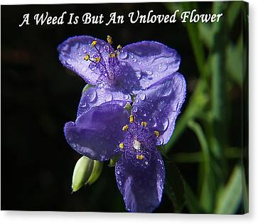 A Weed Is But An Unloved Flower Canvas Print