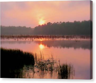 A Wetlands Sunrise Canvas Print by JC Findley