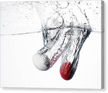 A White And A Red Birds Egg Dropped Canvas Print by Rebecca Hale