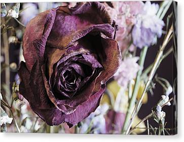 A Wilted Bouquet Canvas Print by Angi Parks