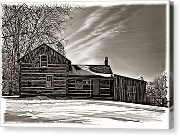 A Winter Dream Monchrome Canvas Print by Steve Harrington