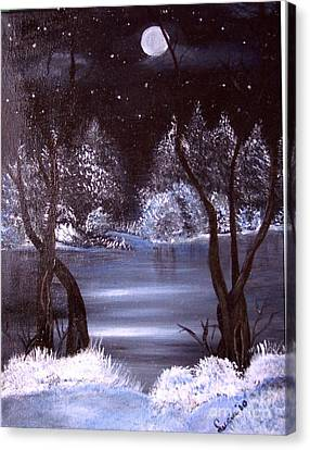 A Winter Night Canvas Print
