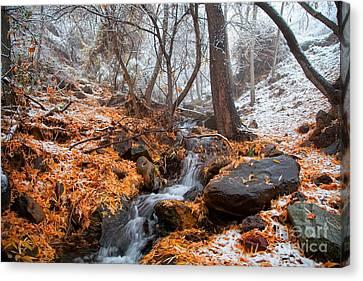 A Winter Scene In Jerome Arizona Canvas Print by Ron Chilston