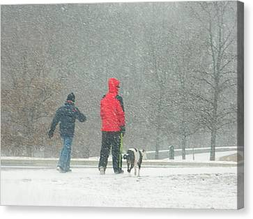 A Winter Walk In The Park - Silver Spring Md Canvas Print by Emmy Marie Vickers