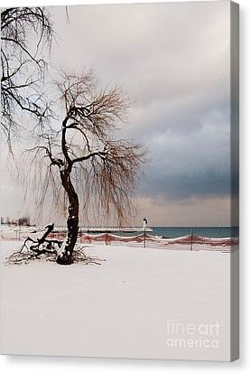 A Winter's Day On Lake Ontario Canada Canvas Print