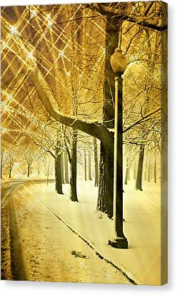 A Winter's Night Canvas Print by Marty Koch
