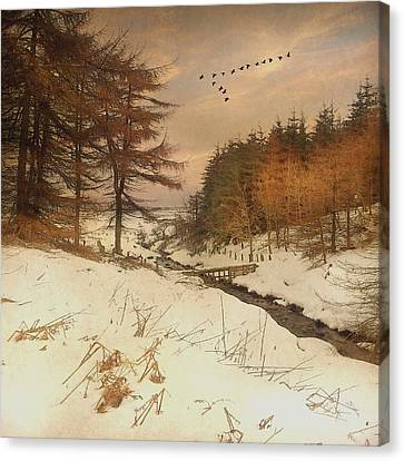 Canvas Print featuring the photograph A Winters Tale by Roy  McPeak