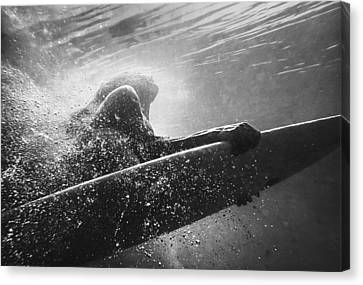 A Woman On A Surfboard Under The Water Canvas Print