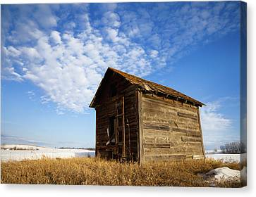 A Wooden Shed Stands Alone Canvas Print by Steve Nagy