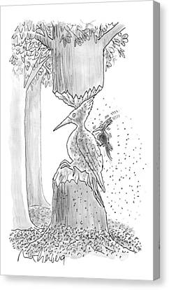 A Woodpecker Is Using His Beak To Carve Is Own Canvas Print