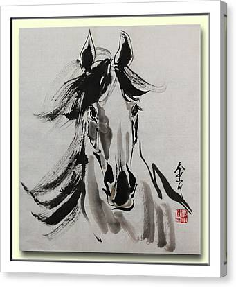 A Young Horse Canvas Print