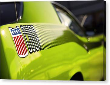 Aar Cuda Canvas Print by Gordon Dean II