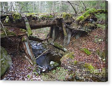 Abandoned Boston And Maine Railroad Timber Bridge - New Hampshire Usa Canvas Print by Erin Paul Donovan