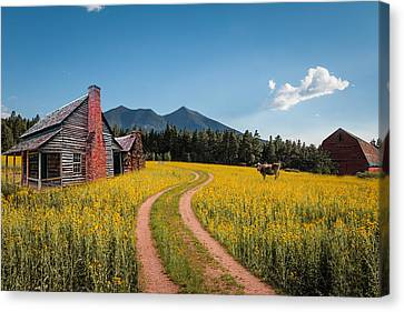 Abandoned Country Life Canvas Print