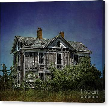 Buzzard Canvas Print - Abandoned Dream by Terry Rowe