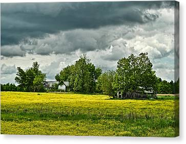 Abandoned Farm In Spring Canvas Print