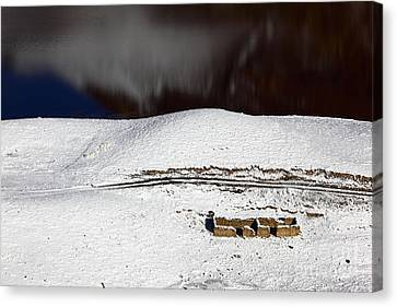 Abandoned House By The Lake In Winter Canvas Print by James Brunker