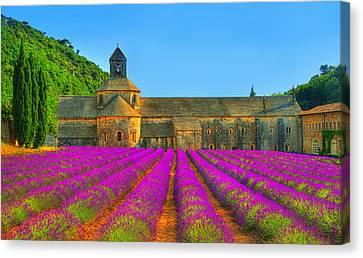 South Of France Canvas Print - Abbaye Notre-dame De Senanque by Midori Chan