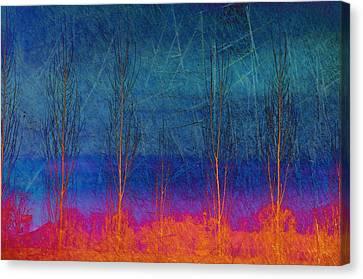 Ablaze II Canvas Print by Jan Amiss Photography