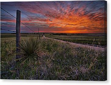 Dirt Canvas Print - Ablaze by Thomas Zimmerman
