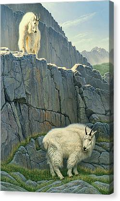 Mountain Goat Canvas Print - Above And Beyond by Paul Krapf
