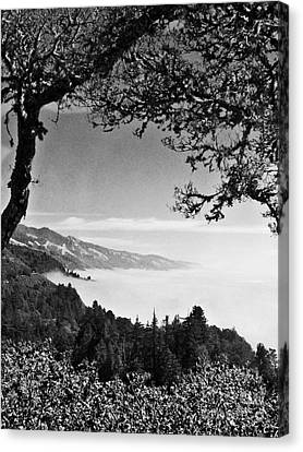 Above Nepenthe In Big Sur Canvas Print