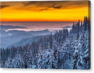 Above Ocean Of Clouds Canvas Print by Evgeni Dinev