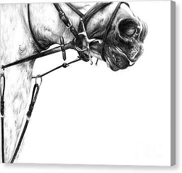 Above The Bit Canvas Print by Sheona Hamilton-Grant
