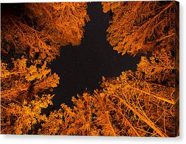 Above The Campfire Canvas Print