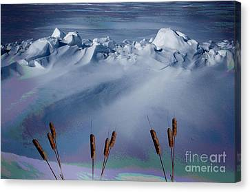 Above The Tree Line Canvas Print by The Stone Age