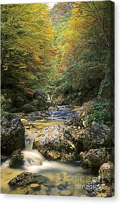 Abruzzo National Park In Italy Canvas Print by George Atsametakis
