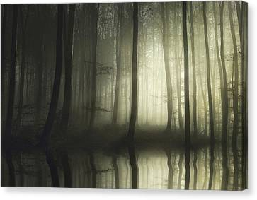 Absolute Silence Canvas Print